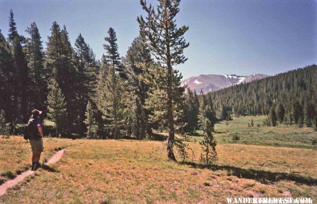 A Tuolumne Trail
