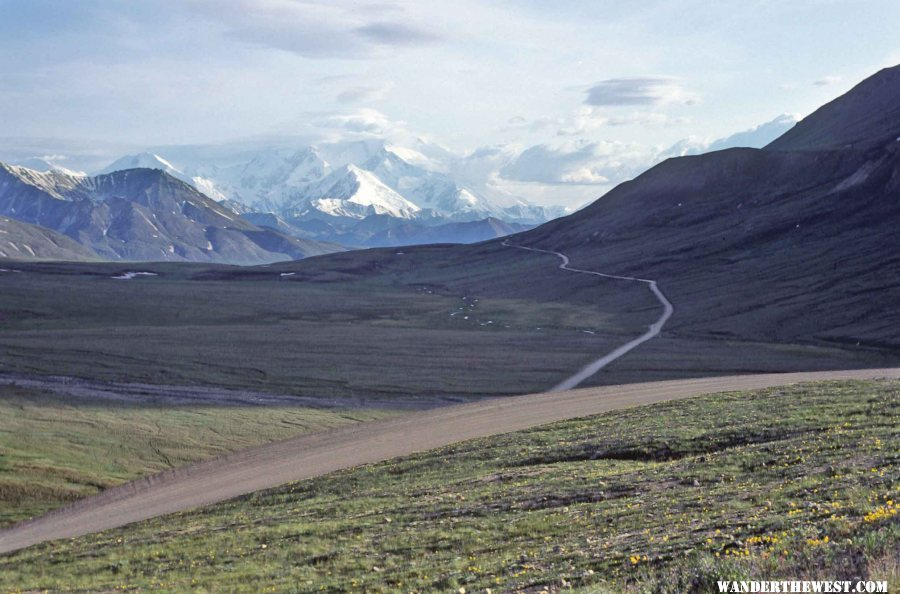 The Denali Park Road