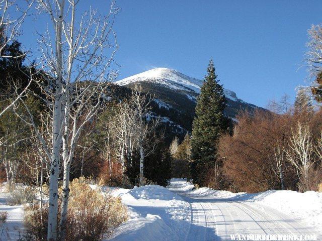 Dec 31, 2009 -- I love it here in the winter!