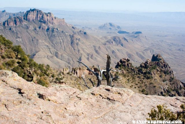 View Where the South Rim and East Rim Meet