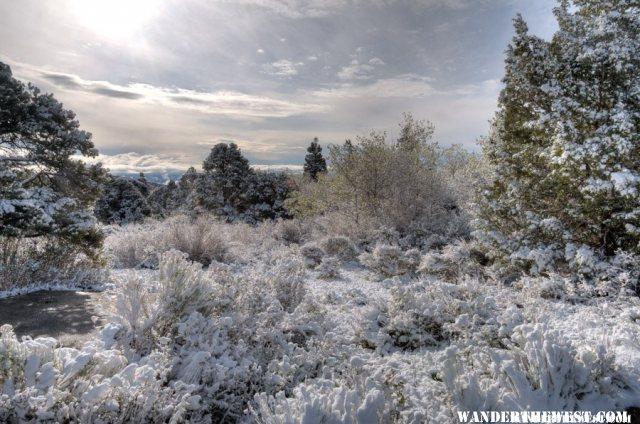 Snowy Morning II