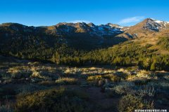 Sonora Pass Morning Light