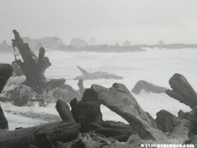 Logs in the surf.