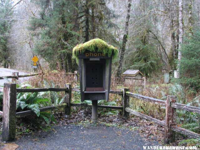 Mossy phone booth