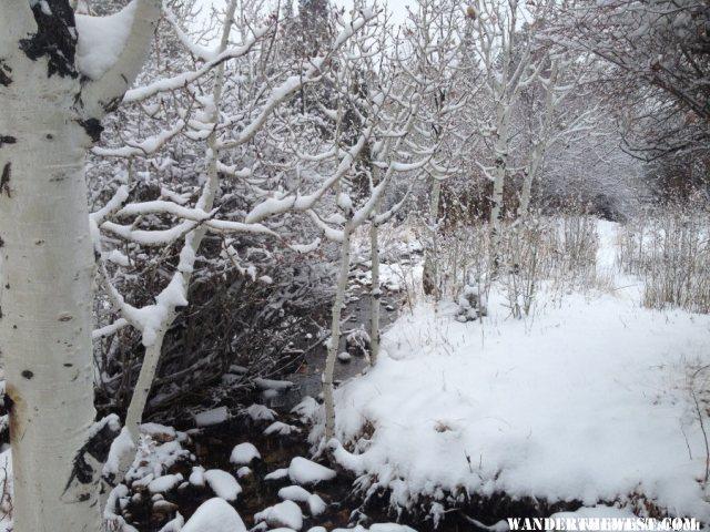 Lehman Creek in winter