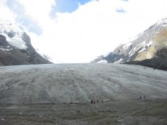 2005 40 CAN ICEFIELDS PKY COLUMBIA ICEFIELD
