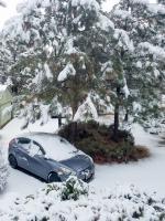 Home-Snow-093645.jpg