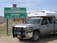 AKC Puckerbrush NV1.jpg